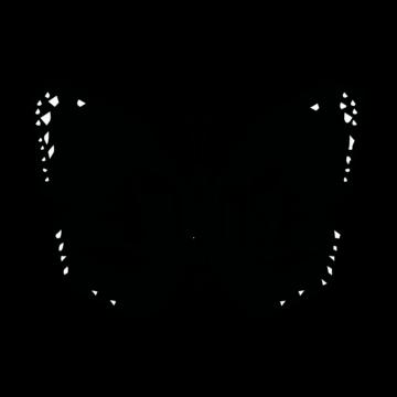 merca_agencia_logo_ajimsa_001